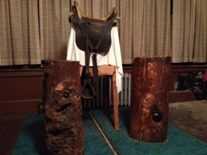 Tree Stumps from Spotsylvania