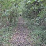 Ballast de l'ancienne voie ferrée, le long de la D675 à Parfouru sur Odon.