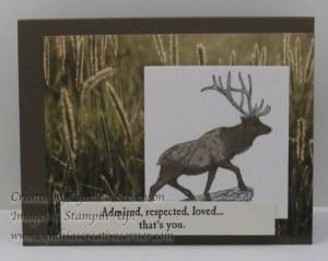 lovely-elk-www-cynthiascreativecorner-com