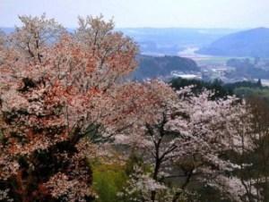 引用元:http://www.ibaraki-outdoor.jp/