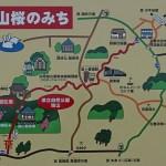 宮城県 春の牡鹿コバルトラインを巡る旅はこちらからどうぞ