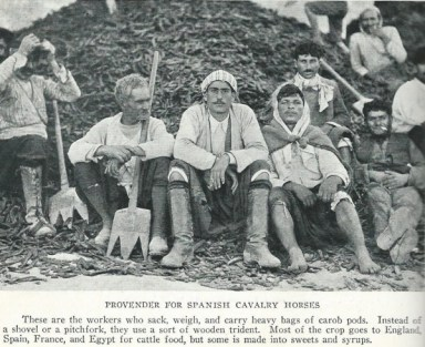 """Village life """"general farm labourers"""" Photo by National Geographic 1928"""