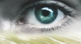 Observant – Ole Nyland