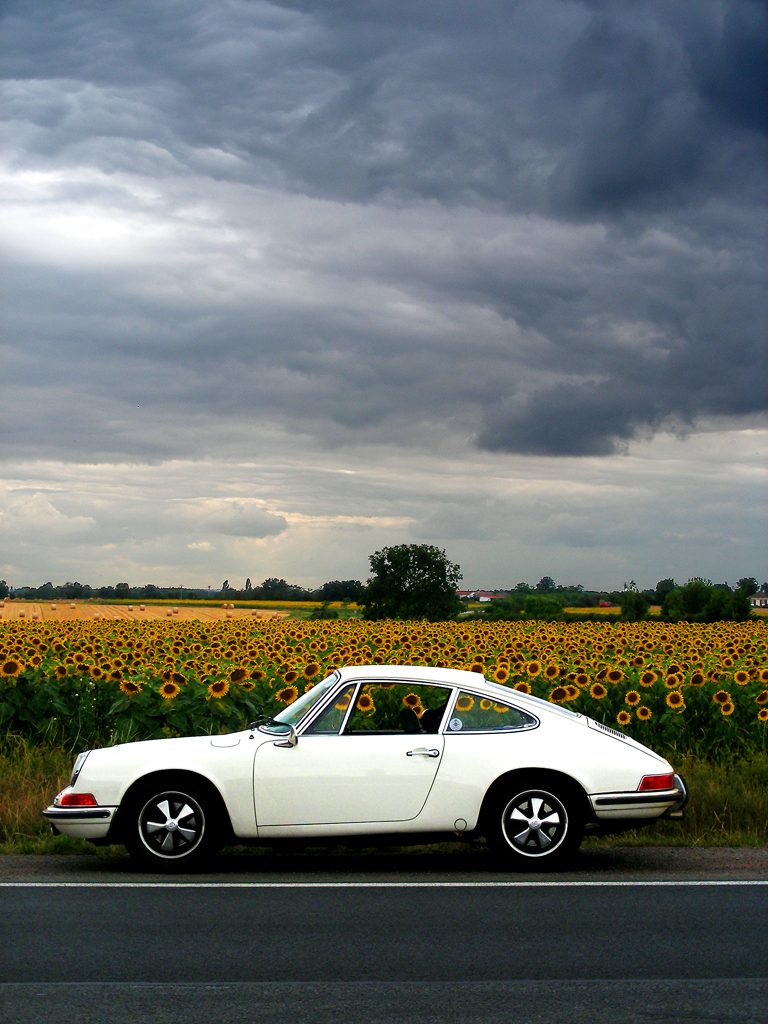 The 50 Years of 911 Photo Stream :: via Formfreu.de