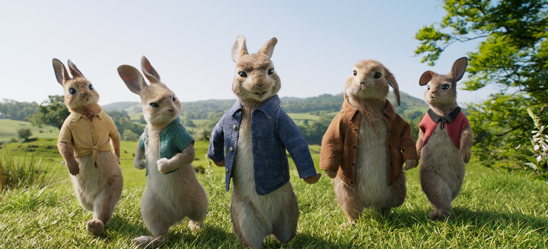 Impeccable Feature Update Watch Peter Rabbit 2017 Online Free Watch Peter Rabbit Online Free Megavideo Learns New Tricks Animal Logic Provided Animation houzz-02 Watch Peter Rabbit Online Free