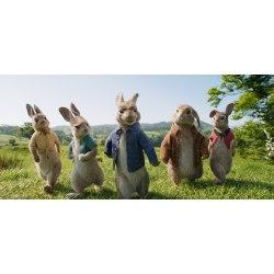 Small Crop Of Watch Peter Rabbit Online Free