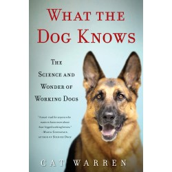 Small Crop Of Books About Dogs