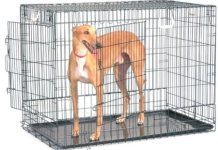 General Cage Premium Folding 200 Series Pet Crate