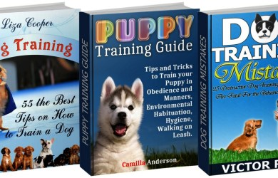 image of dog training books