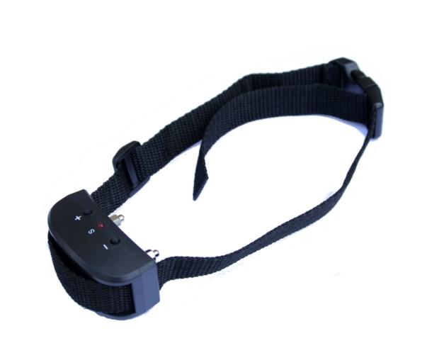 image of dog shock collar