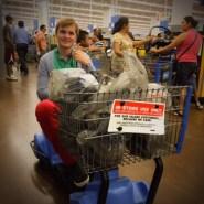 Max Verstappen in de Walmart (2015)