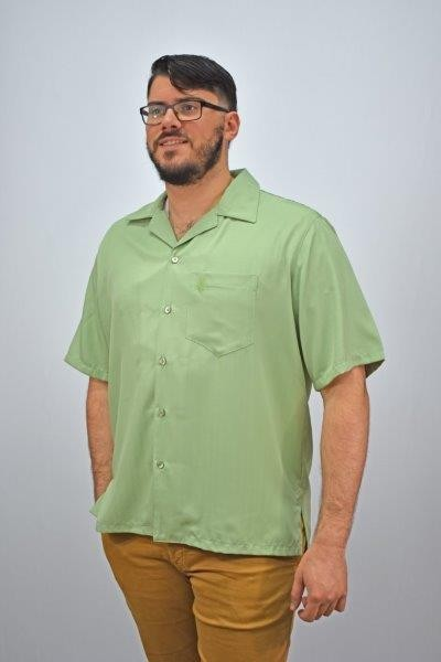D'Accord Sage casual shirt 5978