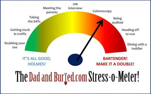 stress o meter1 1024x637 The Dad and Buried Stress o Meter!