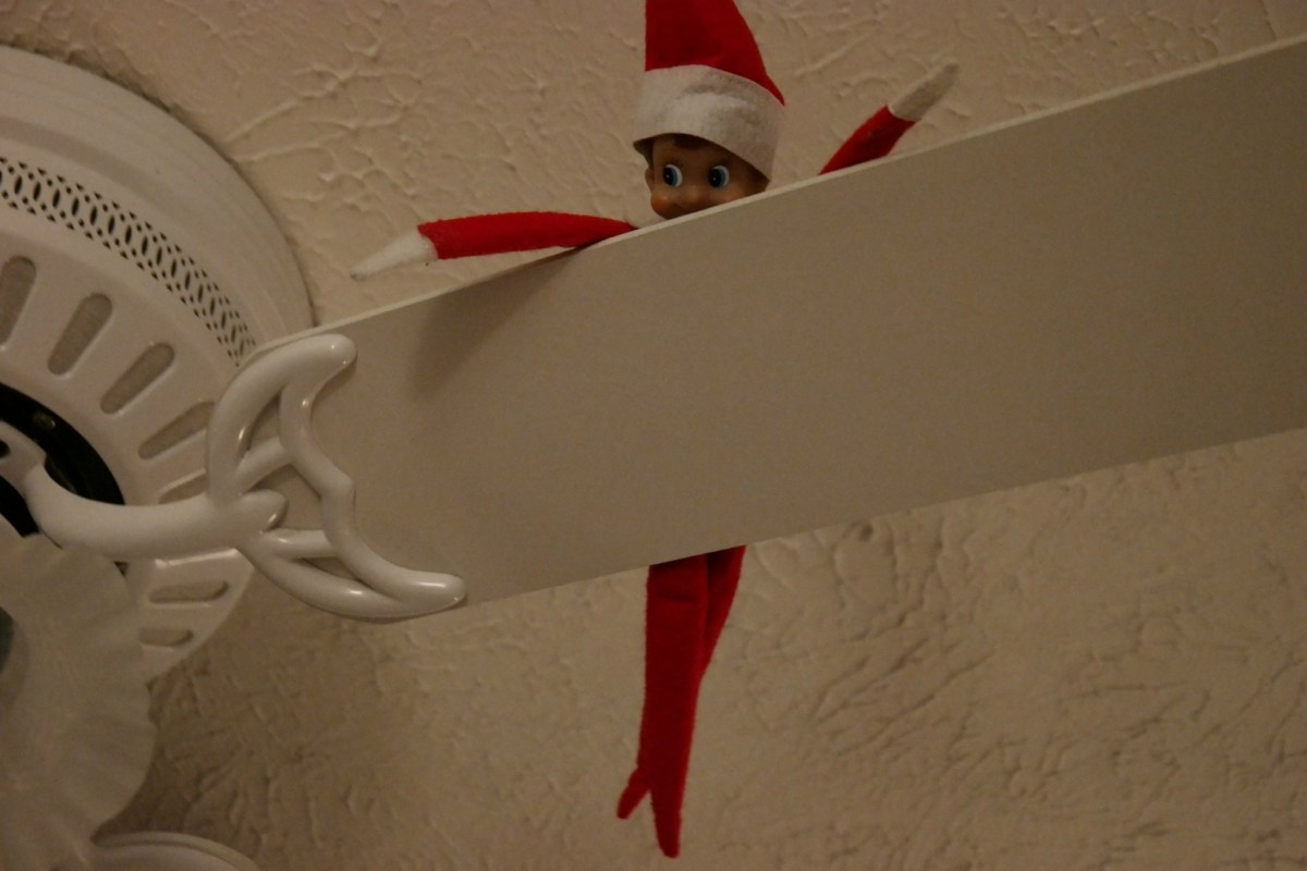 Emmett The Elf – Day 16 #NX1 #Imagelogger #dadchat
