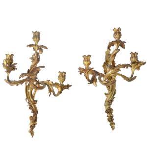 Rococo Bronze Sconses