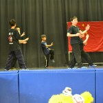 Children Wushu - Advanced  (5) (Medium)