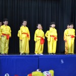 Children Wushu - Beginner  (2) (Medium)