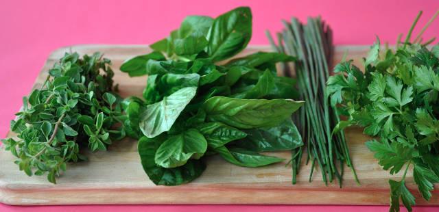 fresh breath herbs