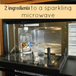 Ten minutes and two ingredients to a sparkling microwave