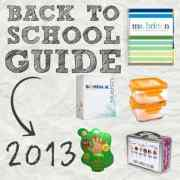 bts guide 2013