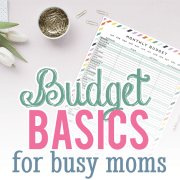 Budget Basics for Busy Moms Option 2