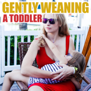 Gently Weaning A Toddler