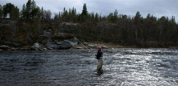 Salmon fishing in the Acha river