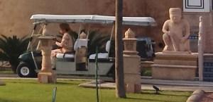 Staff Member in Gold Cart