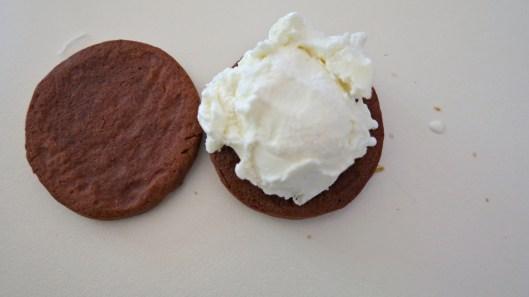 chocolate cookie and ice-cream