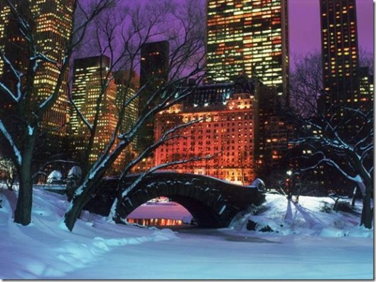 New York City Central Park  Winter