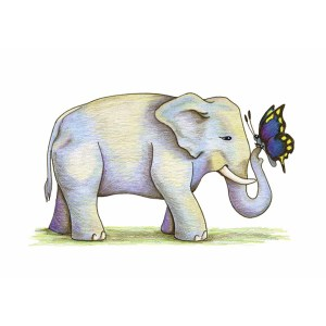 """Elephant with Butterfly"" by Dakota Midnyght Art"