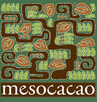 mesoLogo
