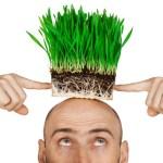 植毛と増毛