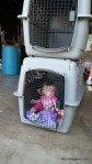 Abby decides this is how she wants to travel to Oregon.