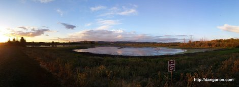 This is heaven. Ankeny Wildlife Reserve.