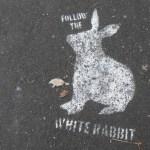 follow white rabbit stencil