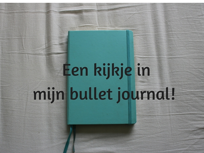 http://www.lisanneleeft.nl/alles-de-bullet-journal/