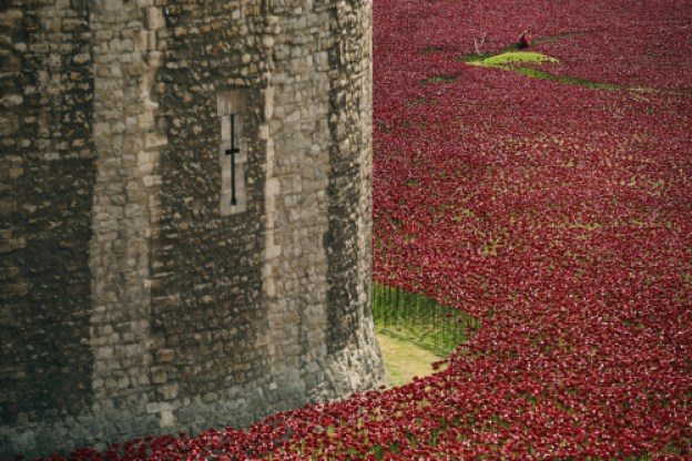 Poppies-TowerofLondon-photo-DanKitwood-for-Getty-Images