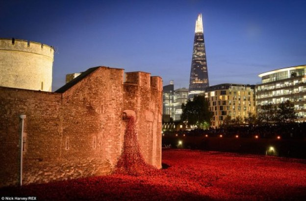 Poppies-at-night-TowerofLondon-2-photo-by-Nick-Harvey-REX