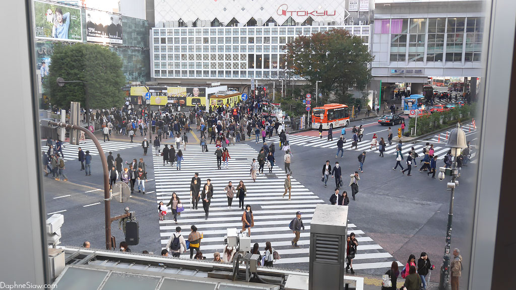 Shibuya Crossing from Starbucks
