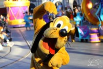 Springtime at Disneyland - February_21_2016-76