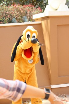 Walt Disney World - Day 1-34