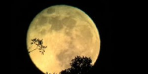Hanmi Lunar Dharma Rites