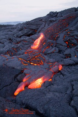 Kupapa'u Lava