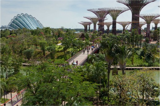 Singapore - cities should be places where beauty is seen