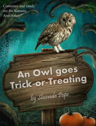 Interview with Sherrida Pope, author of An Owl goes Trick-or-Treating