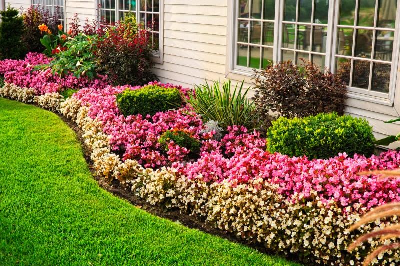 Large Of Beautiful Backyard Landscaping Ideas
