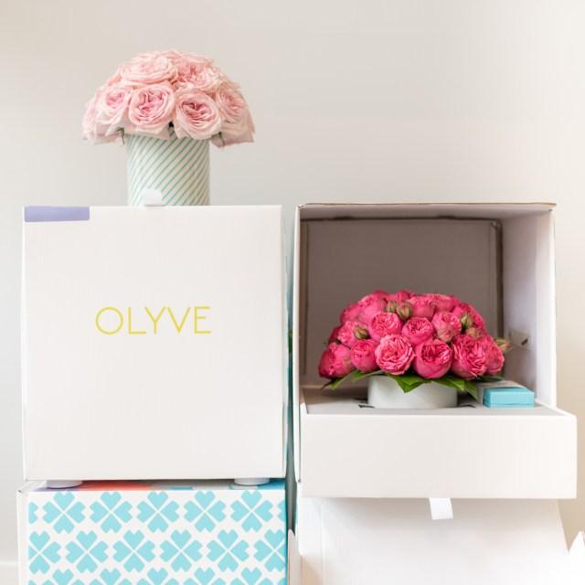 Olyve Valentine's Day 1