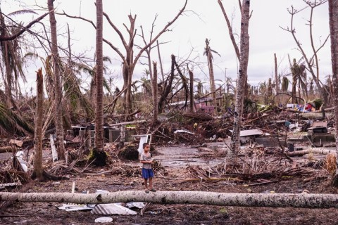 A kid stands amidst fallen trees in Palo, Leyte. (contributed photo by Ken Bandayanon)