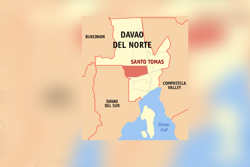 Davao Norte village official arrested in drugs buy-bust
